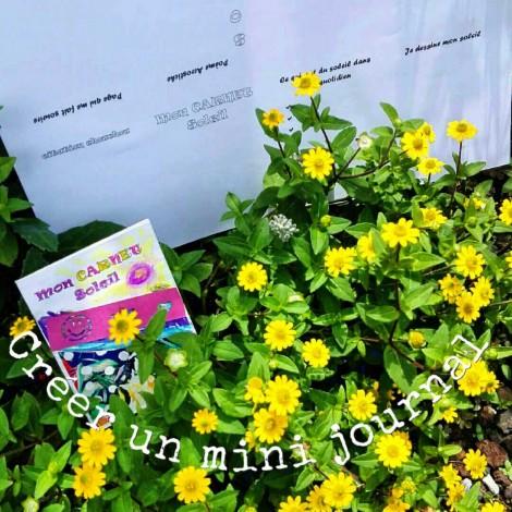 Créer un mini-journal (tuto) #13
