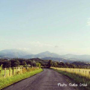 Se ressourcer avec son journal créatif (atelier nature)
